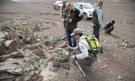 UCN INICIÓ CATASTRO DE FLORA EN RESERVA NACIONAL LA CHIMBA