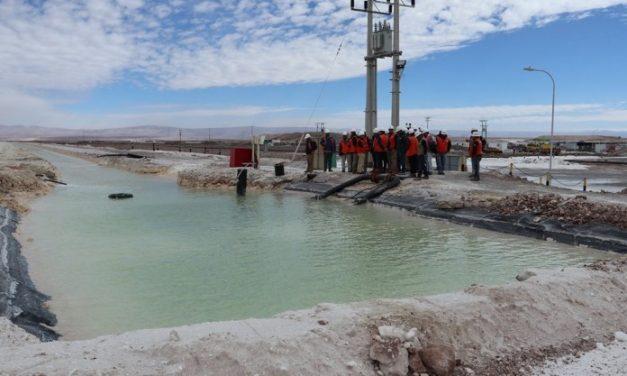 Consejo de Pueblos Atacameños celebra decisión del Primer Tribunal Ambiental respecto a Plan de Cumplimiento de SQM