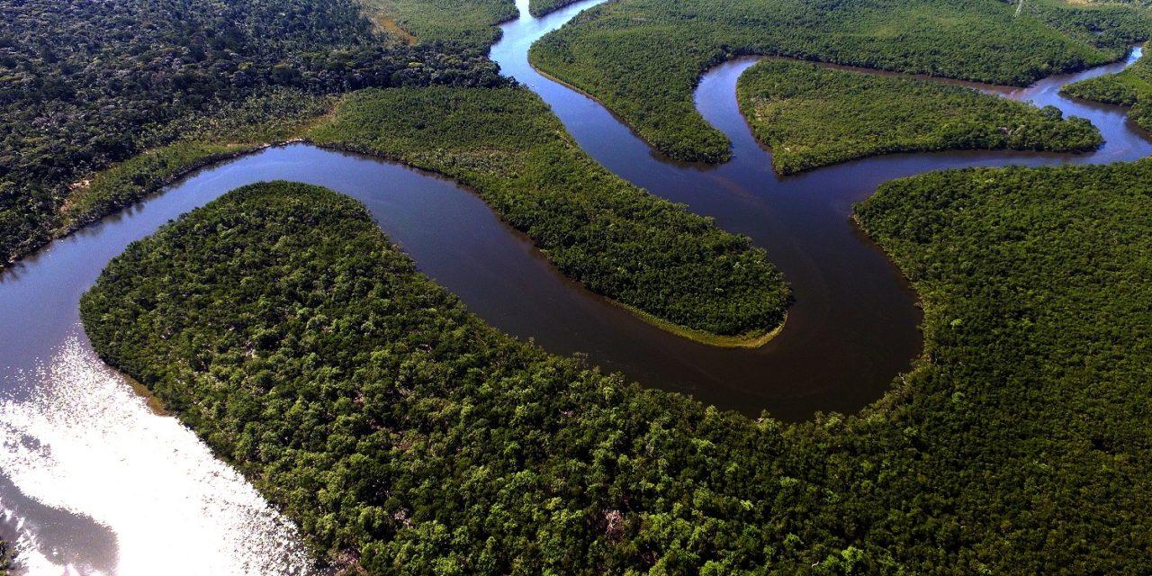 Natura se adhiere al movimiento #MoveTheDate que alerta sobre el límite de los recursos naturales del planeta