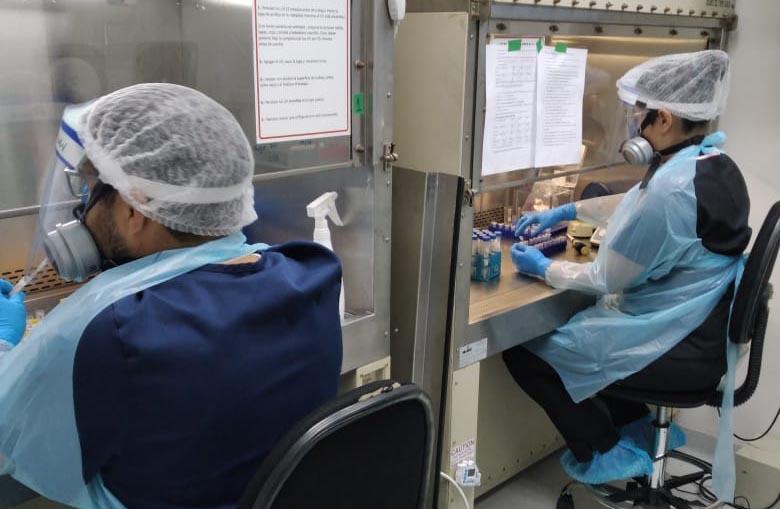 Laboratorio de Virología Molecular de la U. de Antofagastasupera las 13 mil muestras de exámenes por PCR en cuatro meses de trabajo