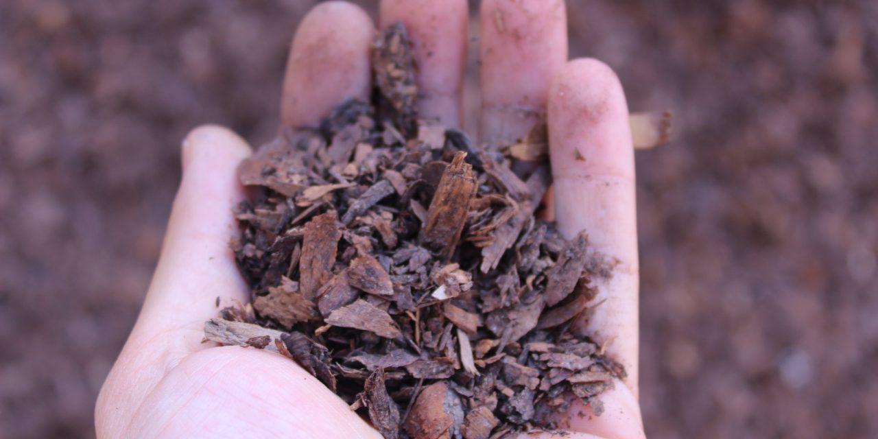 Ministerio del Medio Ambiente presenta Estrategia Nacional de Residuos Orgánicos que propone ambiciosa meta de reciclaje