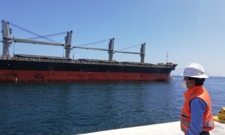 Puerto Antofagasta al servicio de empresas tradicionales de la ciudad para la importación de insumos de la construcción