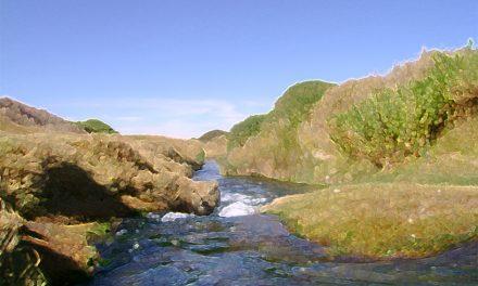 Concluye estudio destinado a diagnosticar el caudal ambiental del río Loa