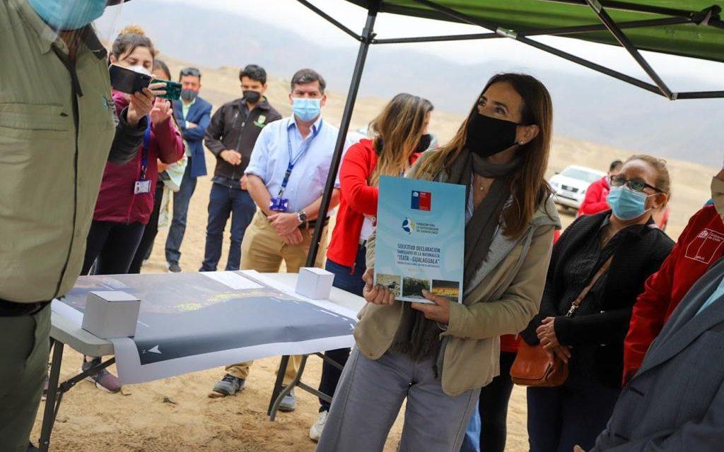 Ministra Schmidt inicia proceso para proteger sector de nidificación del gaviotín chico e inspecciona el primer Santuario de la Naturaleza de Antofagasta