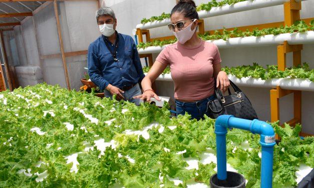Codelco apoyó proyecto audiovisual de Escuela de Tocopilla para enseñar agricultura