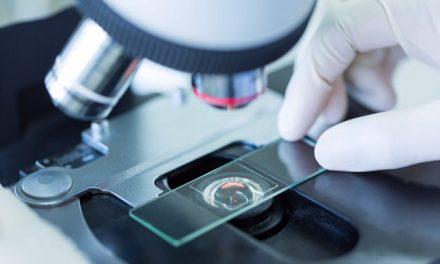 UCN en consorcio que se adjudicó segunda etapa del Programa Ciencia e Innovación 2030