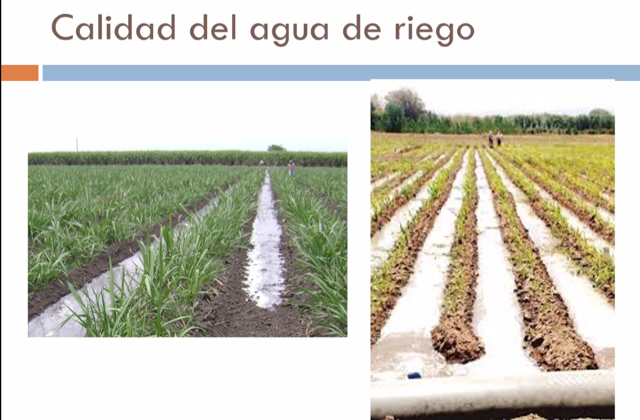 Región de Antofagasta dio fuerte impulso a la reutilización de aguas de procesos para uso agrícola