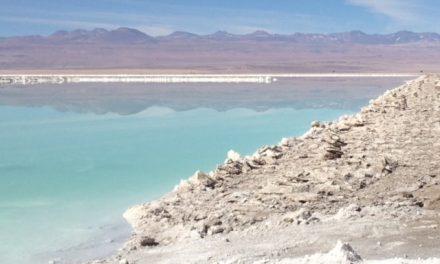 Programa Pyme Activa Antofagasta entregará acompañamiento digital a negocios de la capital regional
