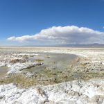 Acuerdo de conciliación permitirá rescatar el Salar de Punta Negra