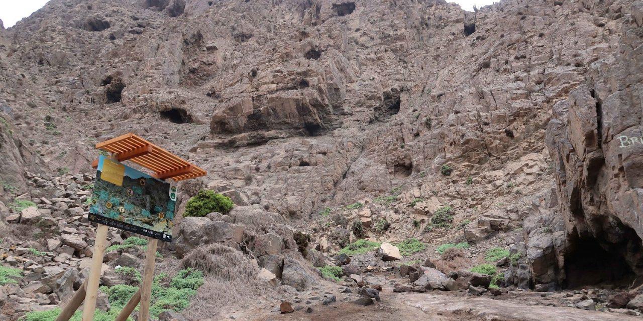 Expertos UCN advierten amenaza sobre especies de la Reserva Nacional La Chimba