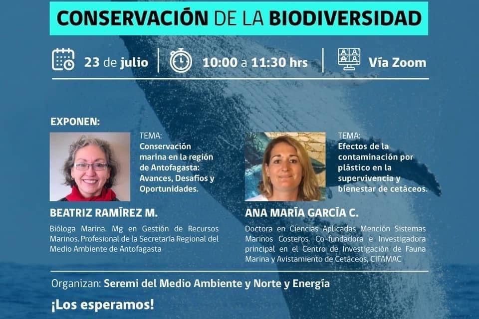 En webinar abordarán el impacto de la basura marina en la conservación de la biodiversidad