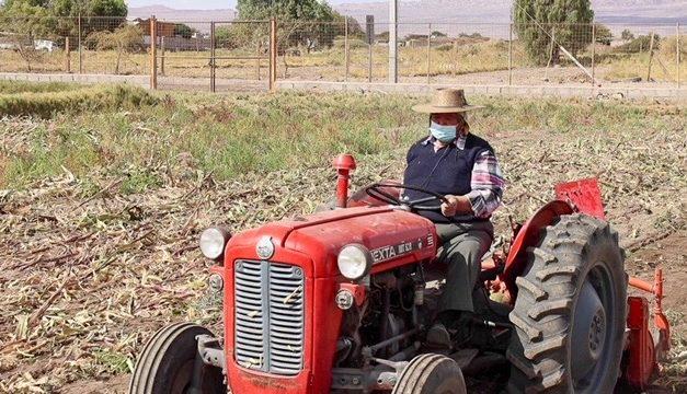 Agricultura loína prepara suelos para una nueva temporada agrícola