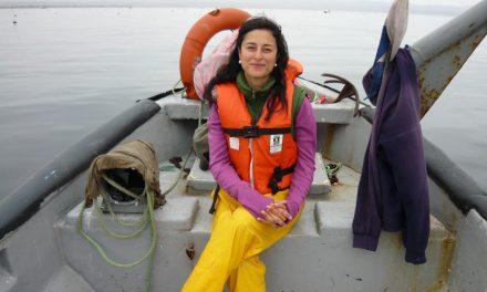 """Bióloga Marina e Investigadora de la Universidad de Antofagasta, Patricia Echeverría Morales: """"El cambio climático amenaza el pulmón de nuestro planeta"""""""