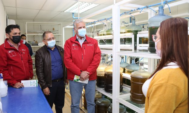 Uso microalgas para mejoramiento de suelos genera interés nacional