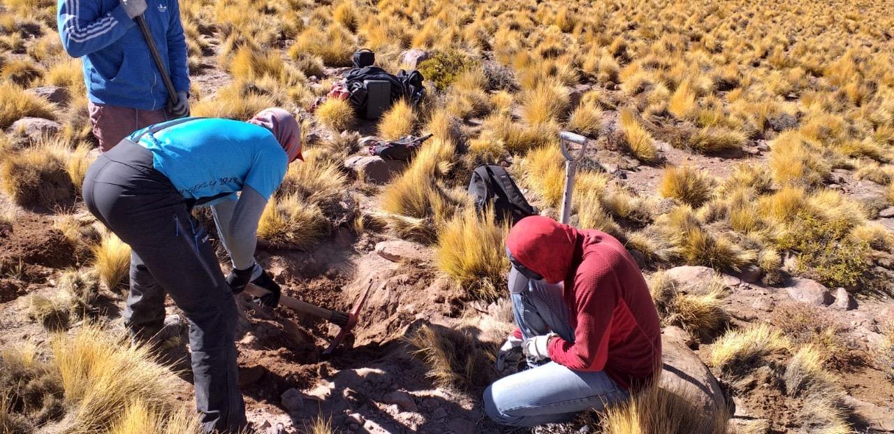Geólogos UCN crearán mapa geológico del volcán Licancabur