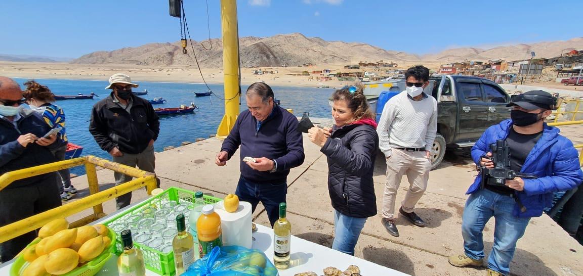 Instalarán el primer criadero de moluscos y algas en Mejillones